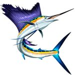 sailfish, sailfish jumping, jumping sailfish, billfish, marlin, pelagic, fishing art, sport fishing, big game fish, realistic, painting, fish art, fishing art, sportfishing, sport fishing art