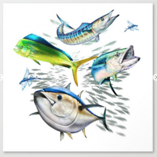 dolphin, king mackerel, wahoo, tuna