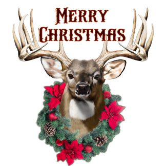 Whitetail Buck Christmas, Whitetail Buck, hunting Christmas