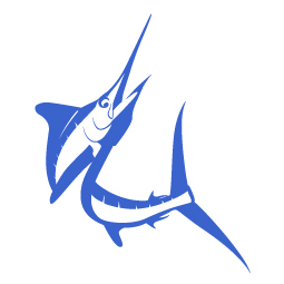 white marlin, marlin vector, marlin, billfish, marlin, pelagic, fishing art, sport fishing, big game fish, realistic, painting, fish art, fishing art, sportfishing, sport fishing art